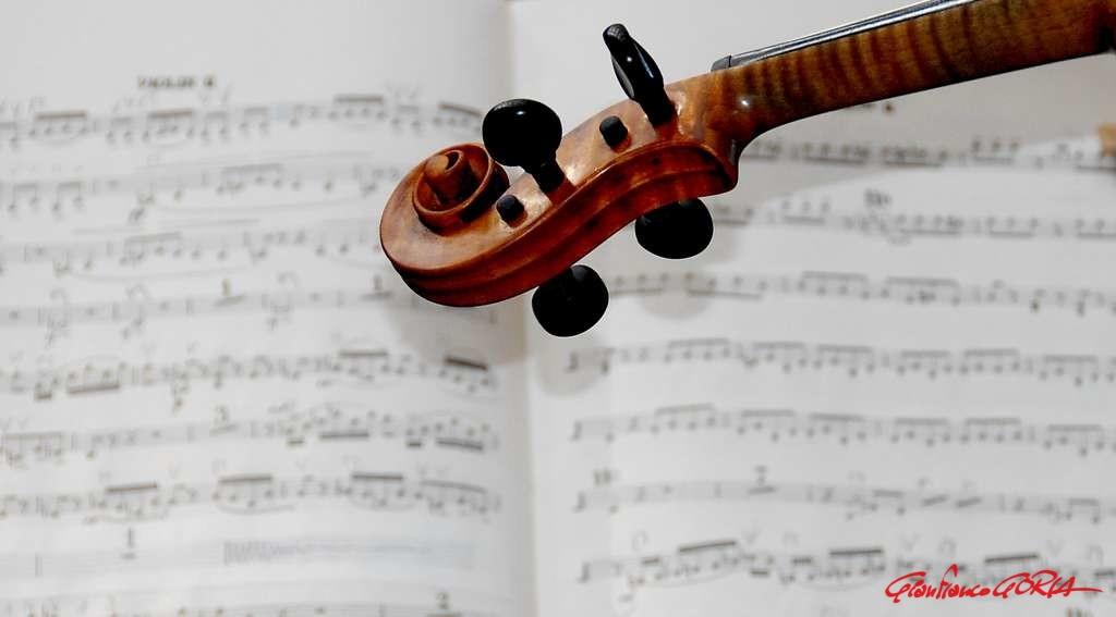 Musica - foto Gianfranco Goria - afnews