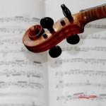 Musica e parole. Eh.