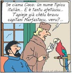 TintinCastafioreMonegasco - certo, il copyright è Hergé-Moulinsart per i personaggi
