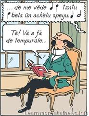 TintinGirasoleMonegasco - certo, il copyright è Hergé-Moulinsart per i personaggi