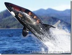Girasole3-hammacher-schlemmer-killer-whale-submarine-tournesol-tintin