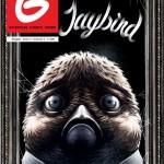 Jaybird dalla Finlandia su Super G