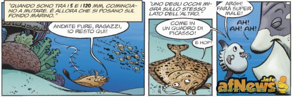 marini2