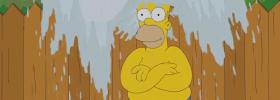 Anche Homer sotto la doccia anti-Sla!