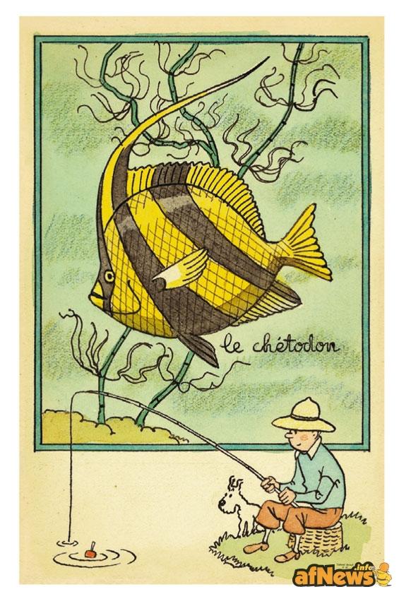 Tintin pesca - originale anni 40