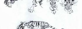Franquin tigre