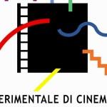 A Torino i diplomati in animazione 2012-2014