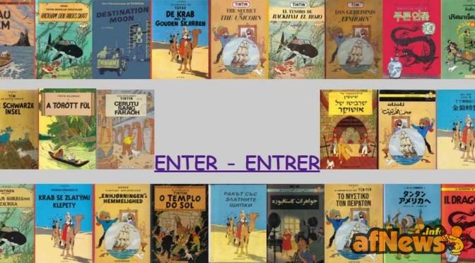 600 albi di Tintin in tutte le lingue: in vendita o scambio!