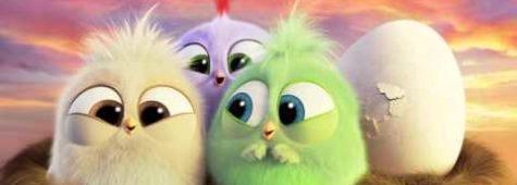 Angry Birds, I pulcini vi augurano buona Festa della Mamma
