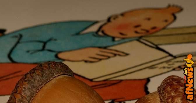 Cip e Ciop con Tintin